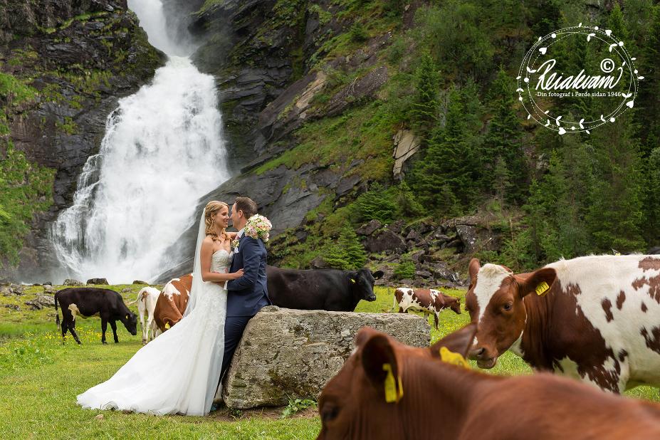 Fotograf Reiakvam brudepar 10